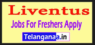 Liventus Recruitment 2017 Jobs For Freshers Apply