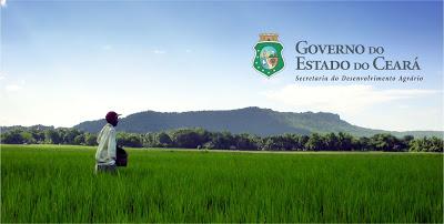 Bolsistas serão contratados para atuarem em Mucambo, Pacujá, Graça e mais 28 municípios