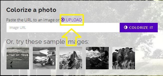 Tanpa Photoshop Inilah Cara Mudah Mewarnai Foto Hitam Putih Vani