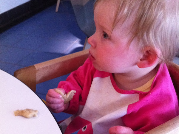 Top Tips for Meals Out When You Are Baby Led Weaning