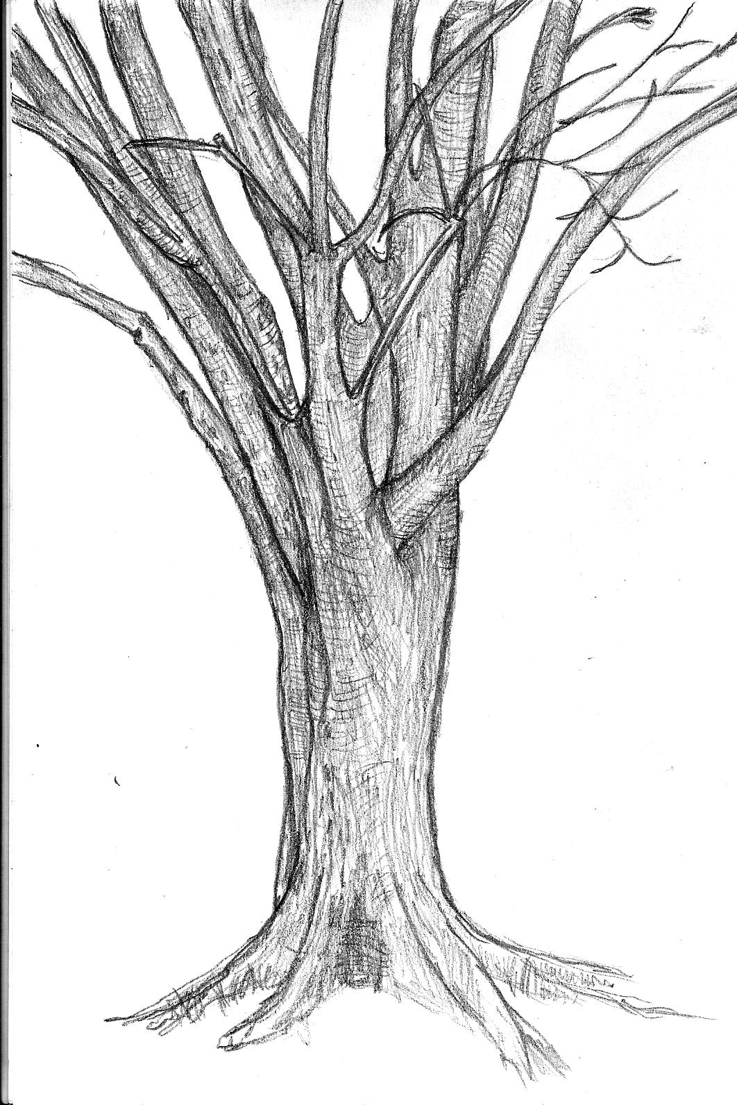 The Impulsive Sketch Journal April