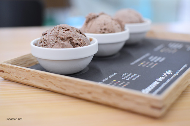Single Origin Dark Chocolate Ice Cream Platter - RM21