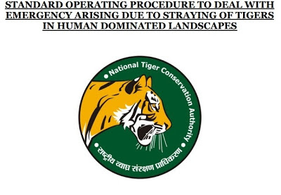 NTCA, SOP, NTCA SOP, National Tiger Conservation Authority, shooting tigers, man eating tigers, human tiger conflict