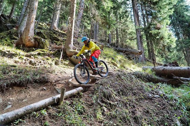e-Bike Nachschlagewerk: Was ist ein Trail?