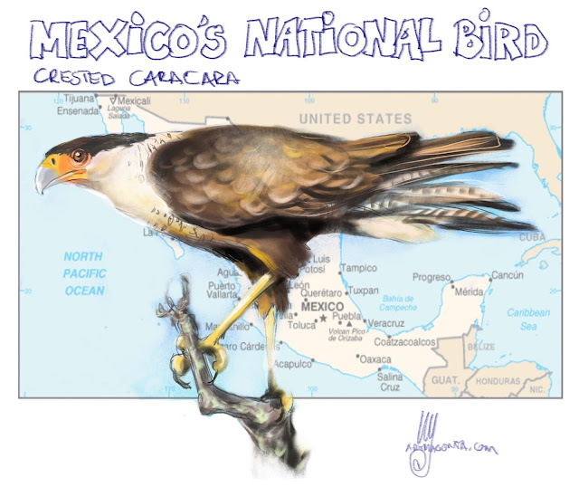 Mexico's national bird painting by Ulf Artmagenta