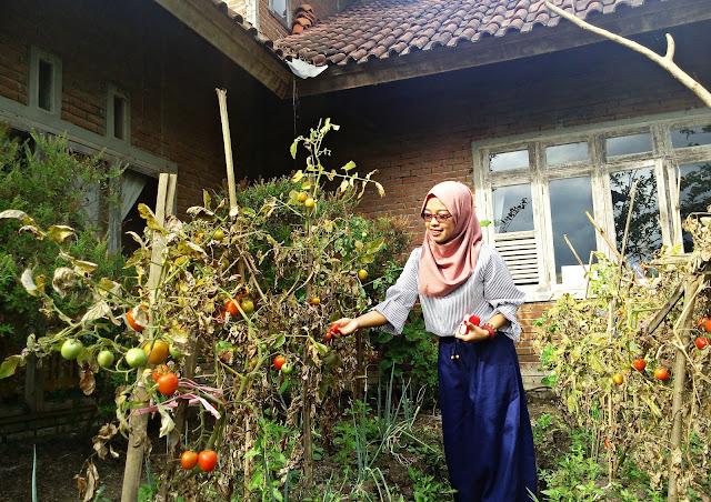 Pesantren Ekologi Ath-Thaariq: Ruang Belajar dan Liburan Asyik di Garut, Jawa Barat