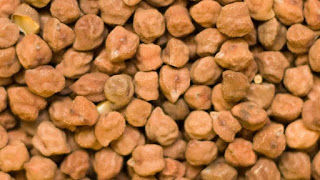 Chana production 70 % lower in Australia