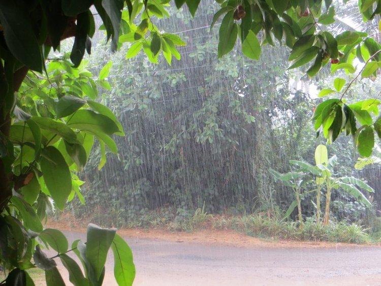дождь перед домом