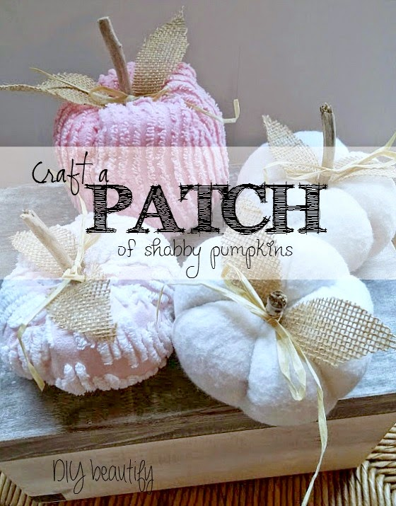 DIY Shabby Pumpkins at www.diybeautify.com