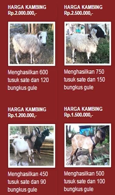 Tipe kambing
