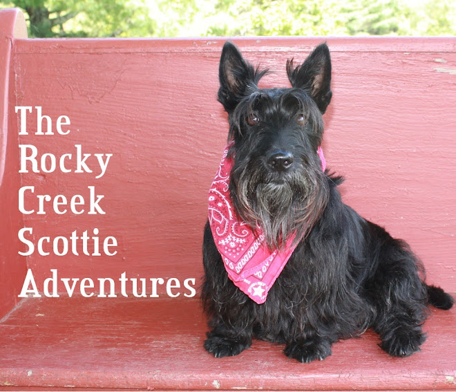 Rocky Creek Scottie Adventures