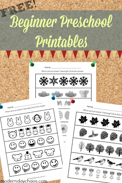 Free Printable - Beginner Preschool - Which Picture?
