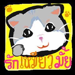 Powder Thai Cat
