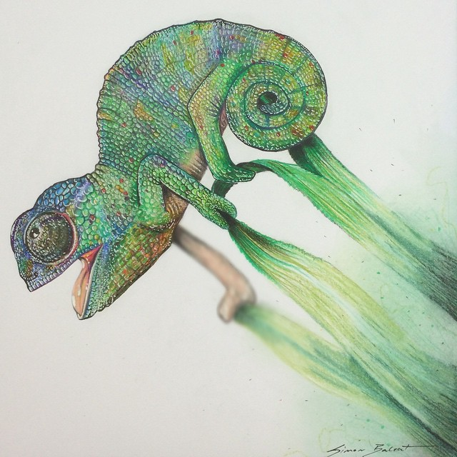 17-Baby-Chameleon-Simon-Balzat-Colored-Pencils-make-Beautiful-Drawings-www-designstack-co