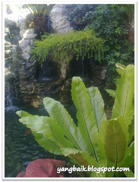 Wordless Wednesday:  Air Terjun dan Kolam