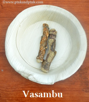 Top 10 Uses and Health Benefits of Vasambu | Acorus calamus