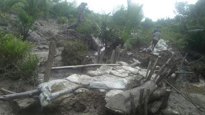 Tanggul Di Rt.02 Ds. Tanjung Senjulang Kembali Jebol,Kelompok Tani Mengeluh.
