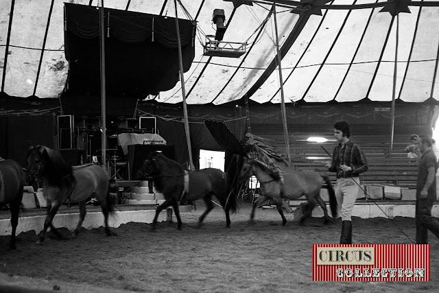 Répétition de dressage sous le chapiteau du Cirque National Suisse Knie  1970