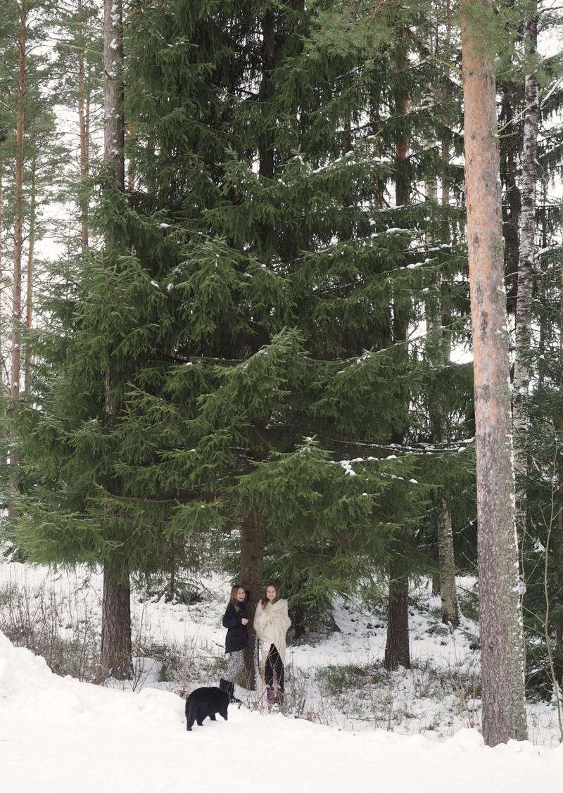 lapset puun alla