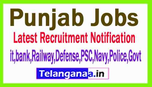 Latest Punjab Government Job Notifications All India Govt Jobs