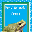 God Makes the Pond Animals: Frogs