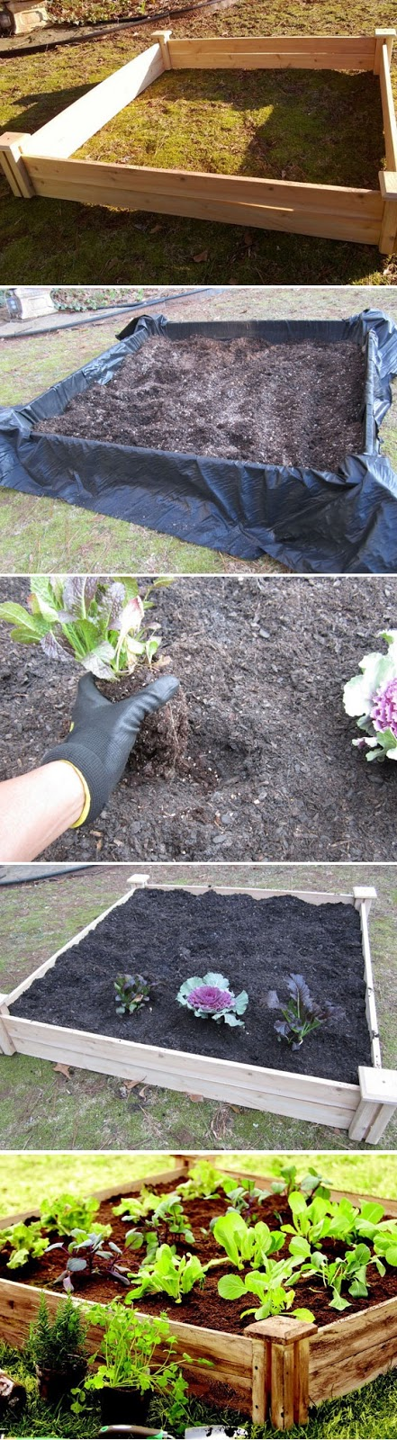 Raised Bed Soil Recipe