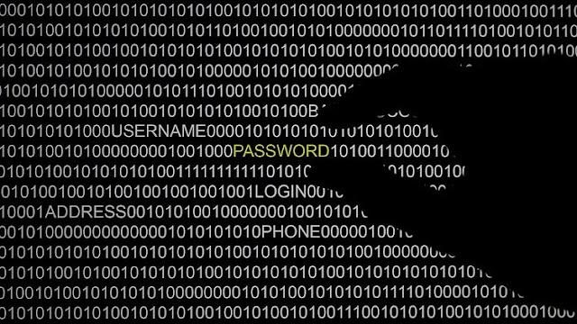 """Un """"hacker"""" publica datos personales de los congresistas demócratas"""