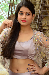Twinkle Agarwal Hot Navel Pictures