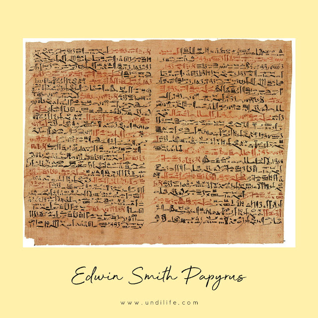 Edwin Smith Papyrus