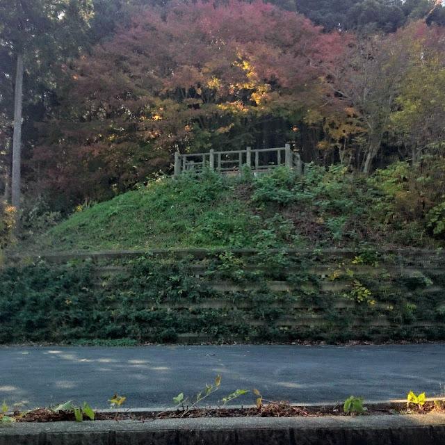 奥武蔵グリーンライン 黒山展望台