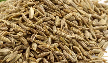 Benefits of Cumin and jeera seeds (Spice) for hair
