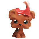 Littlest Pet Shop Gift Set Shi Tzu (#6) Pet