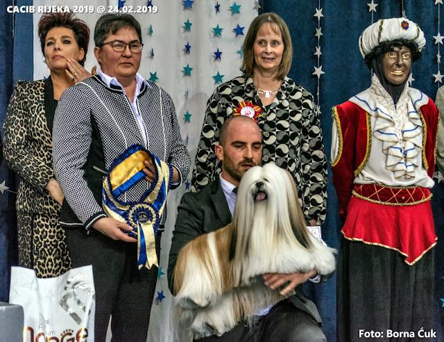 CACIB 2019 međunarodna izložba pasa u Rijeci