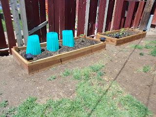 build garden boxes