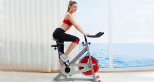 Home Exercise Bikes Best Buy