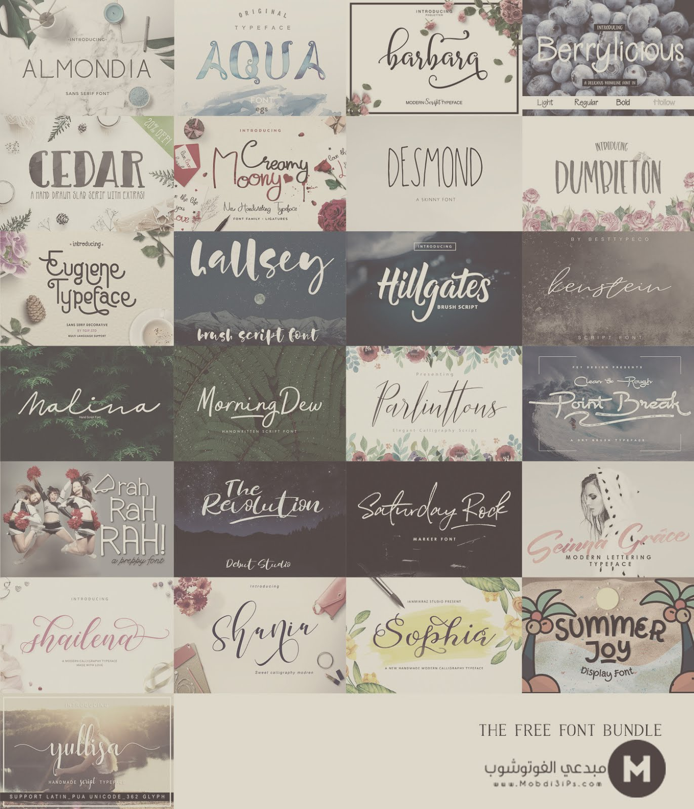 Free Font Bundle (Worth $279!)
