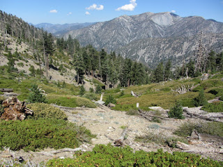 View north toward Mt. Baldy from below Bighorn Peak