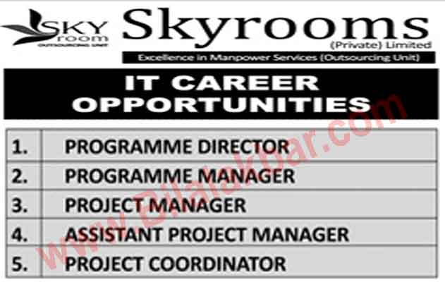 IT Career Opportunities in Skyrooms