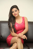 Shipra Gaur in Pink Short Tight Dress ~  Exclusive Poshoot 80.JPG