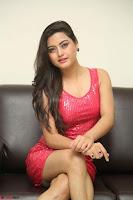 Shipra Gaur in Pink Short Tight Dress ~  Exclusive Poshoot 80.JPG