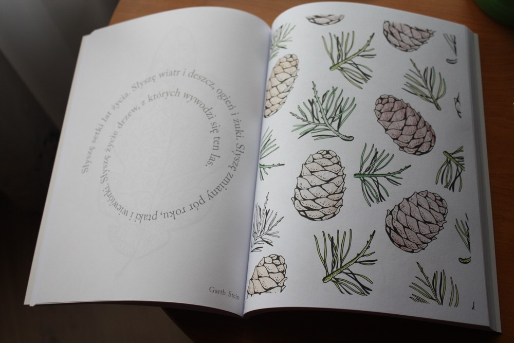 Książka Od Kuchni Blog Recenzencki Drzewo życia Christina Rose