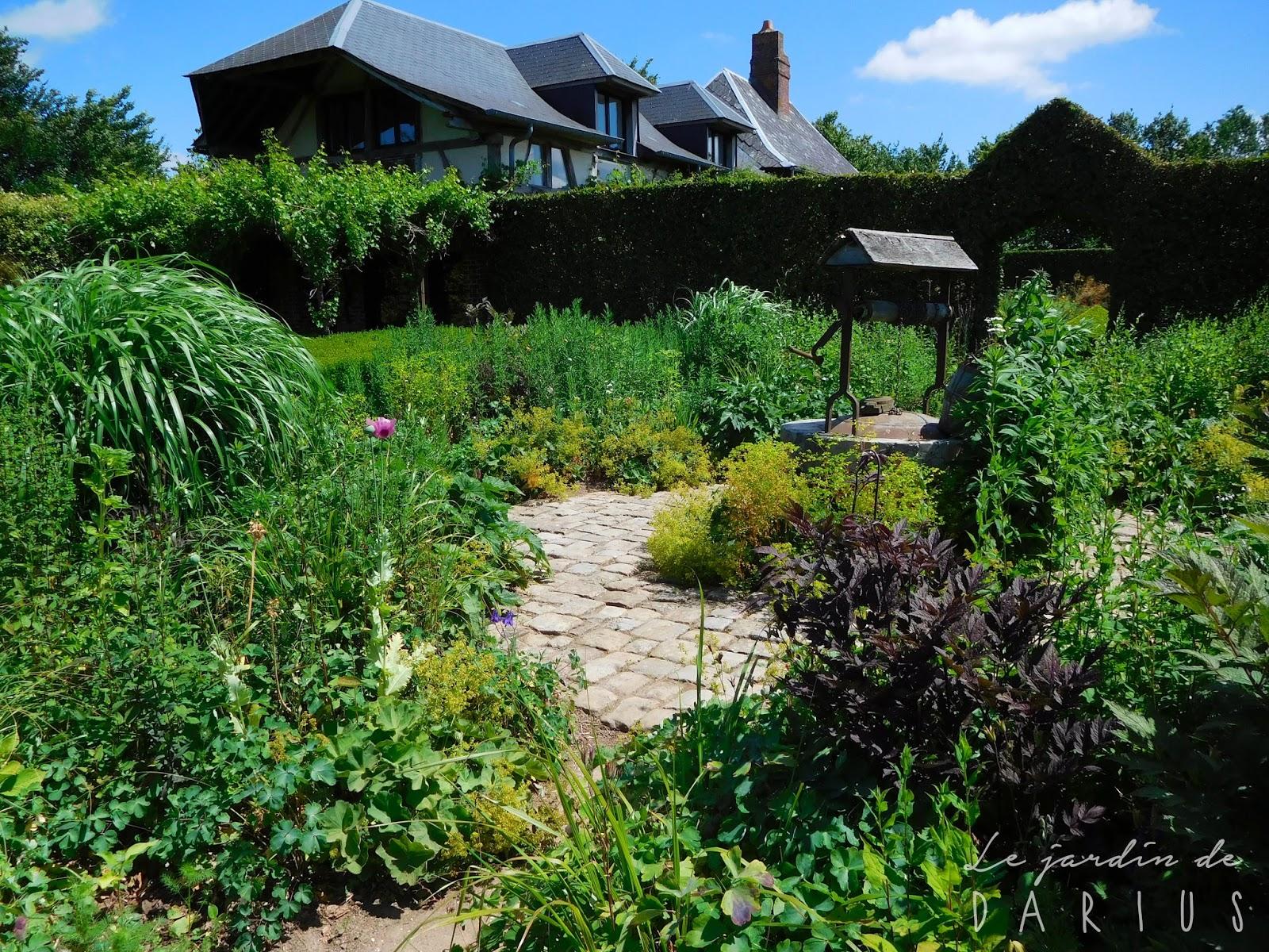 Le jardin de darius le jardin plume for Le jardin des 6