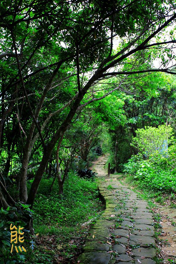虎山親山步道|龍山宮|四獸山