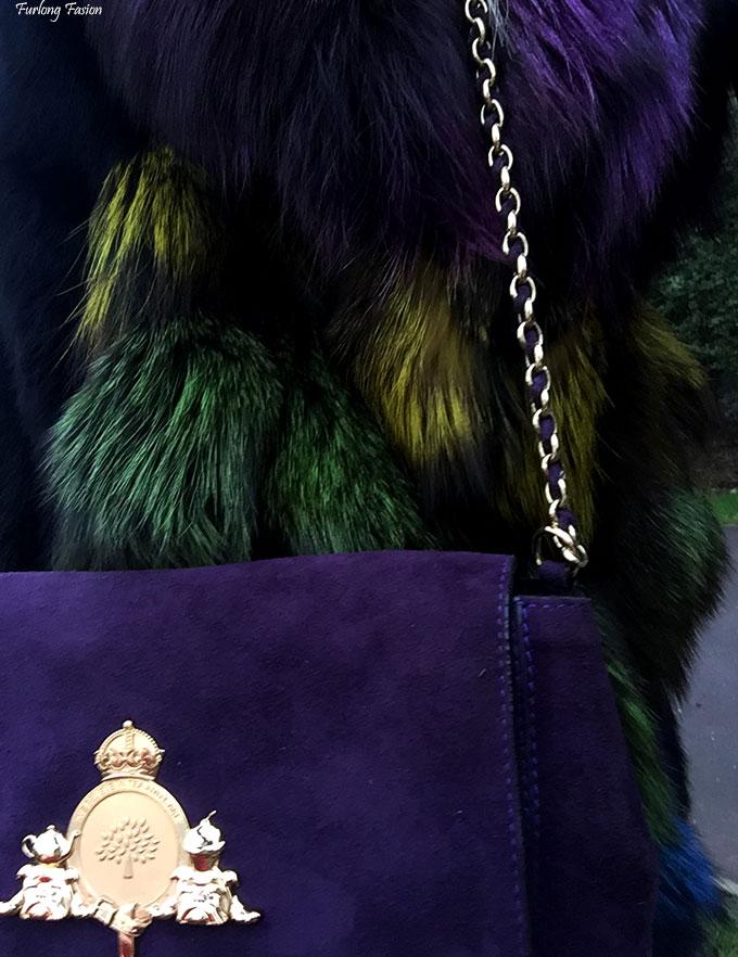 peacock fur