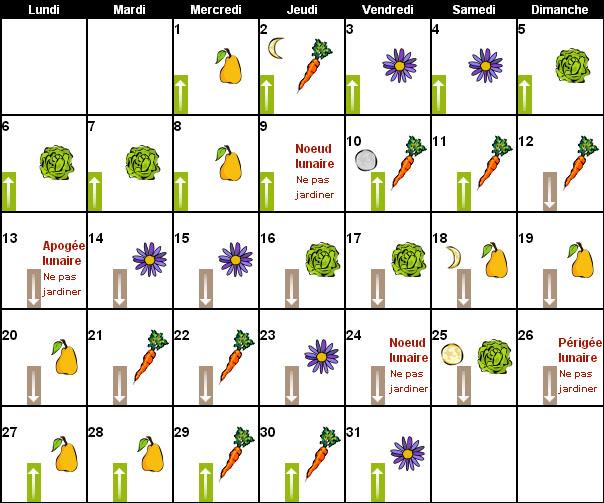 Calendrier Lunaire Graines Et Plantes Mai 2019.Au Tour Du Jardin Calendrier Lunaireau Tour Du Jardin Potager