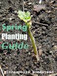 Zone 4 Spring Planting Guide