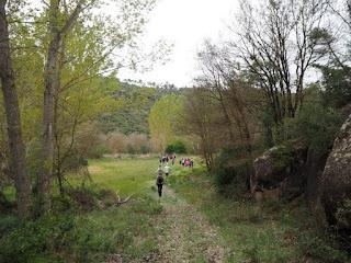 Fent camí a la 36a Caminada Popular de Torà (2017) per Teresa Grau Ros