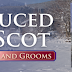 Teaser Blitz - SEDUCED BY A SCOT by Julia London