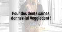 Pour des dents saines, donnez-lui Veggiedent !