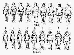 Inilah 7 Penyebab Badan Anda Kurus!